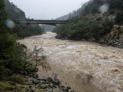 S. Yuba at Hwy 49 bridge 13000 cfs 20170108