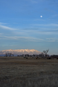 Moon over Mt. Blanca