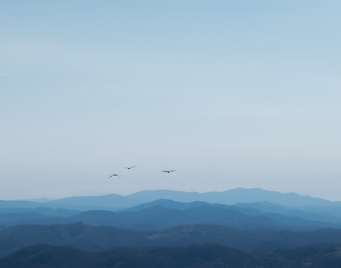 Into the Blue Ridges