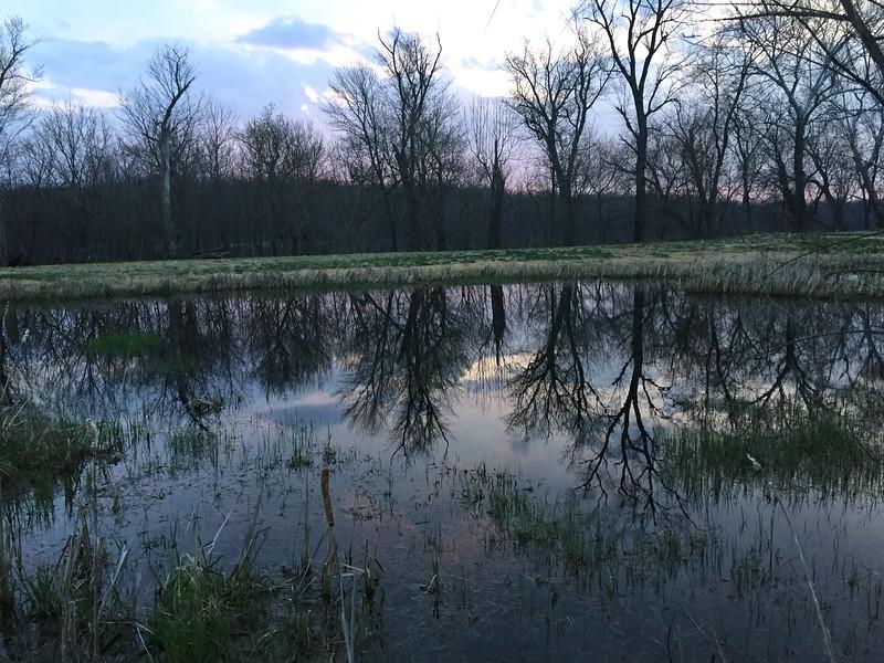 Un étang du club de Golf Landsdowne