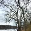 La rivière Potomac