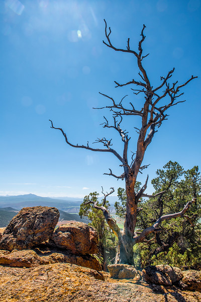 Warner Point Overlook Trail - South Rim, Black Canyon of the Gunnison National Park, Montrose Co., CO