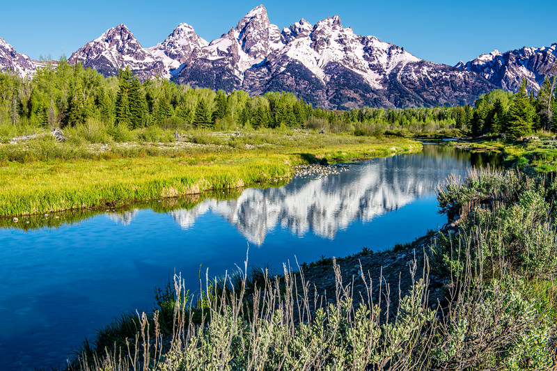 Schwabacher Landing of the Snake River