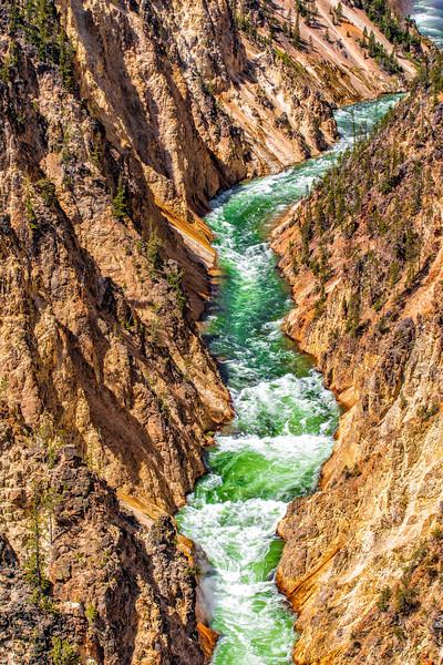 Yellowstone Gorge, Lower Falls, Yellowstone NP,  WY