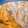 Yellowstone Geothermal Series - No. 3