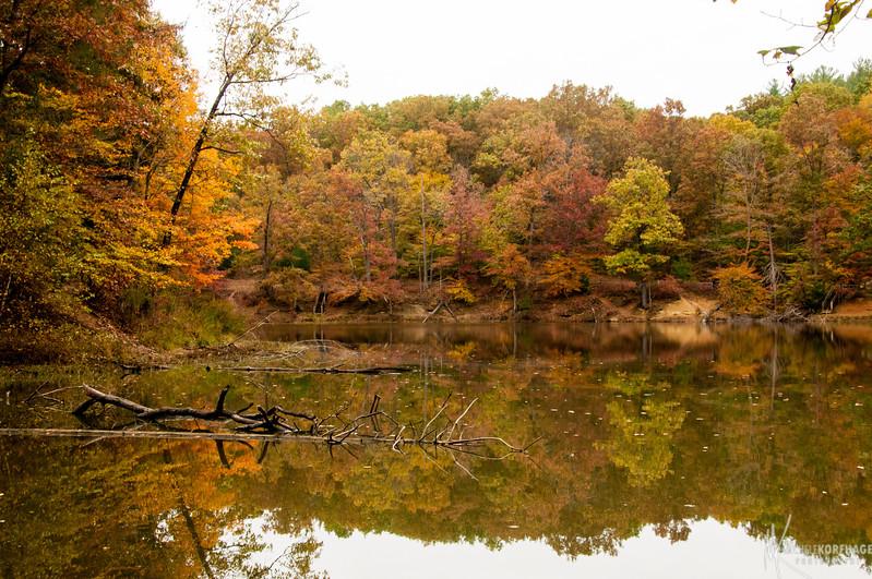 Ogle Lake Reflections