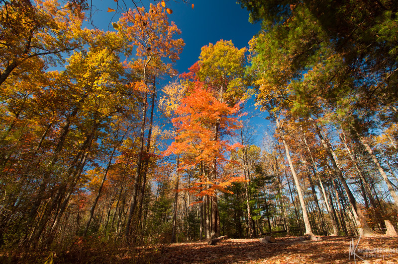Chimney Rock Trail in the Fall