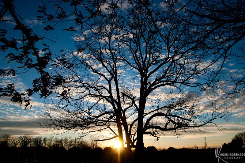 Sunset on the Farm_Horizontal