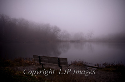 Bench along shoreline, Lake of the Woods. Swope Park. Kansas City, Missouri.