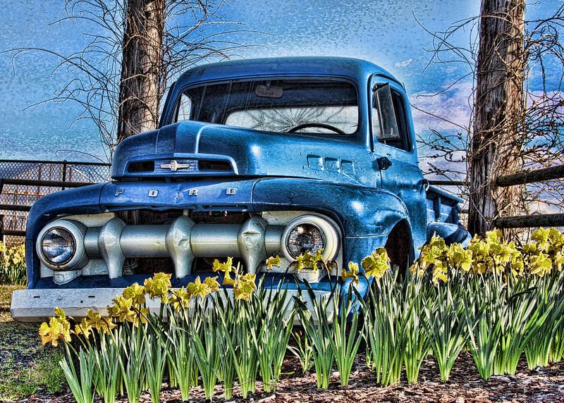 FordHdr-Spring
