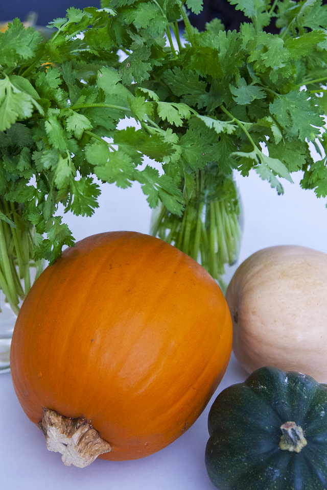 Easy, Low Cost, Minimalist Fall Centerpieces with Cilantro, Acorn Squash, Butternut Squash, Spaghetti Squash, and Sugar Pumpkin