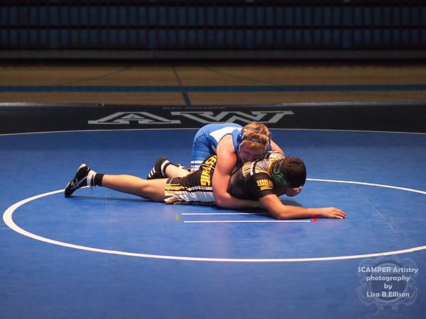 Anthony Wayne Wrestling