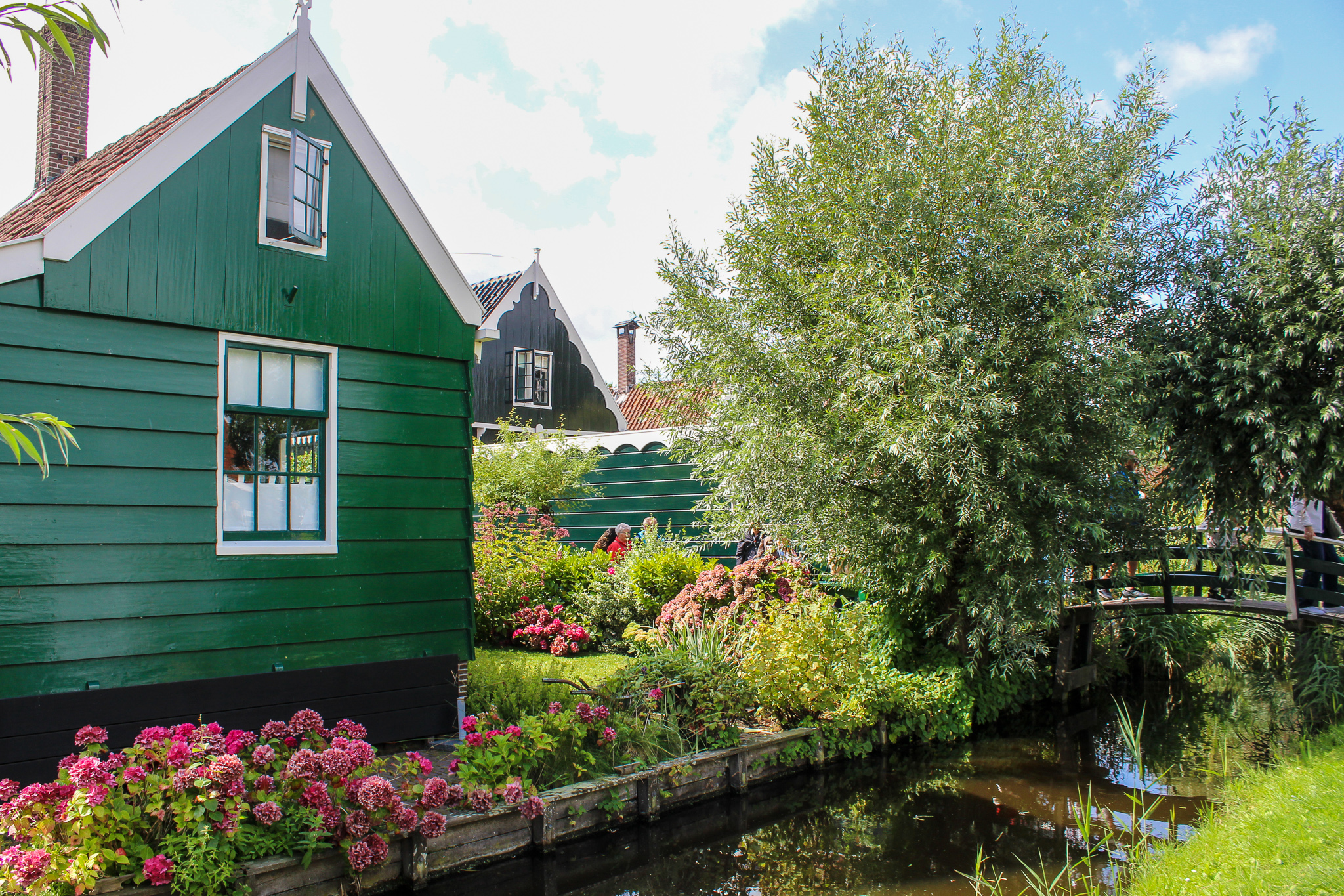 zaanse schans day trip is worth it for these views