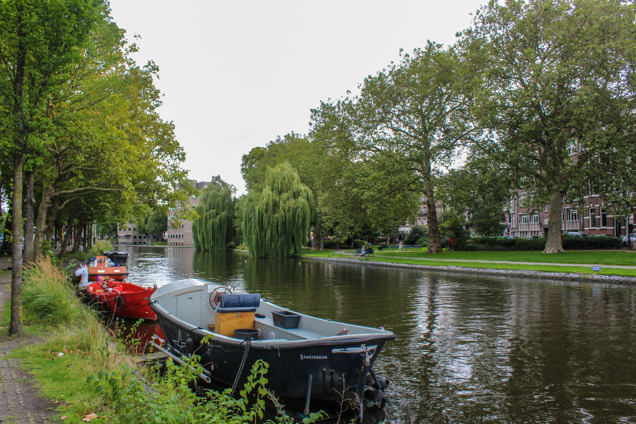 enjoy all the green spaces on your solo trip amsterdam