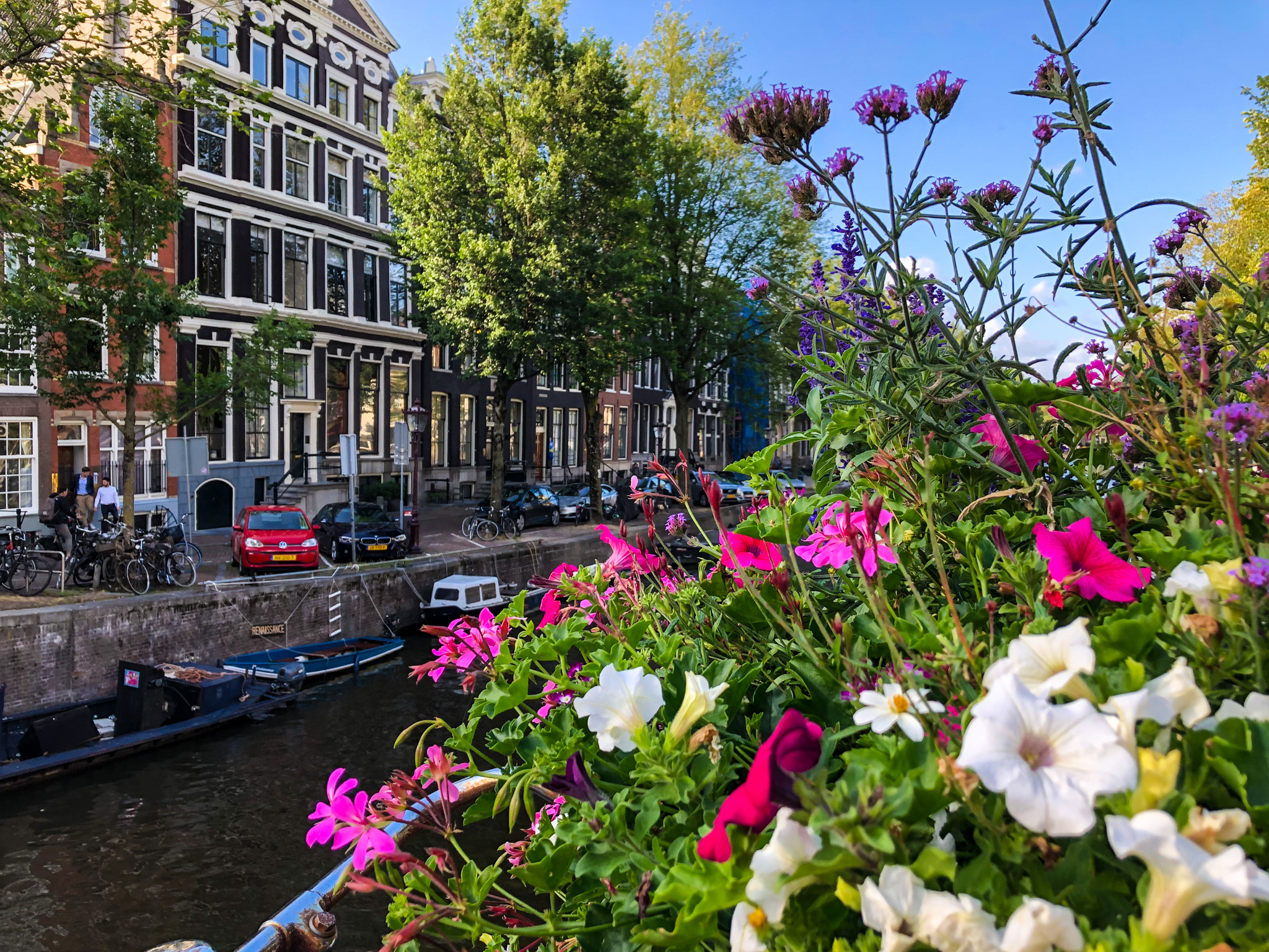 Is Amsterdam Worth Visiting? absolutely for these views