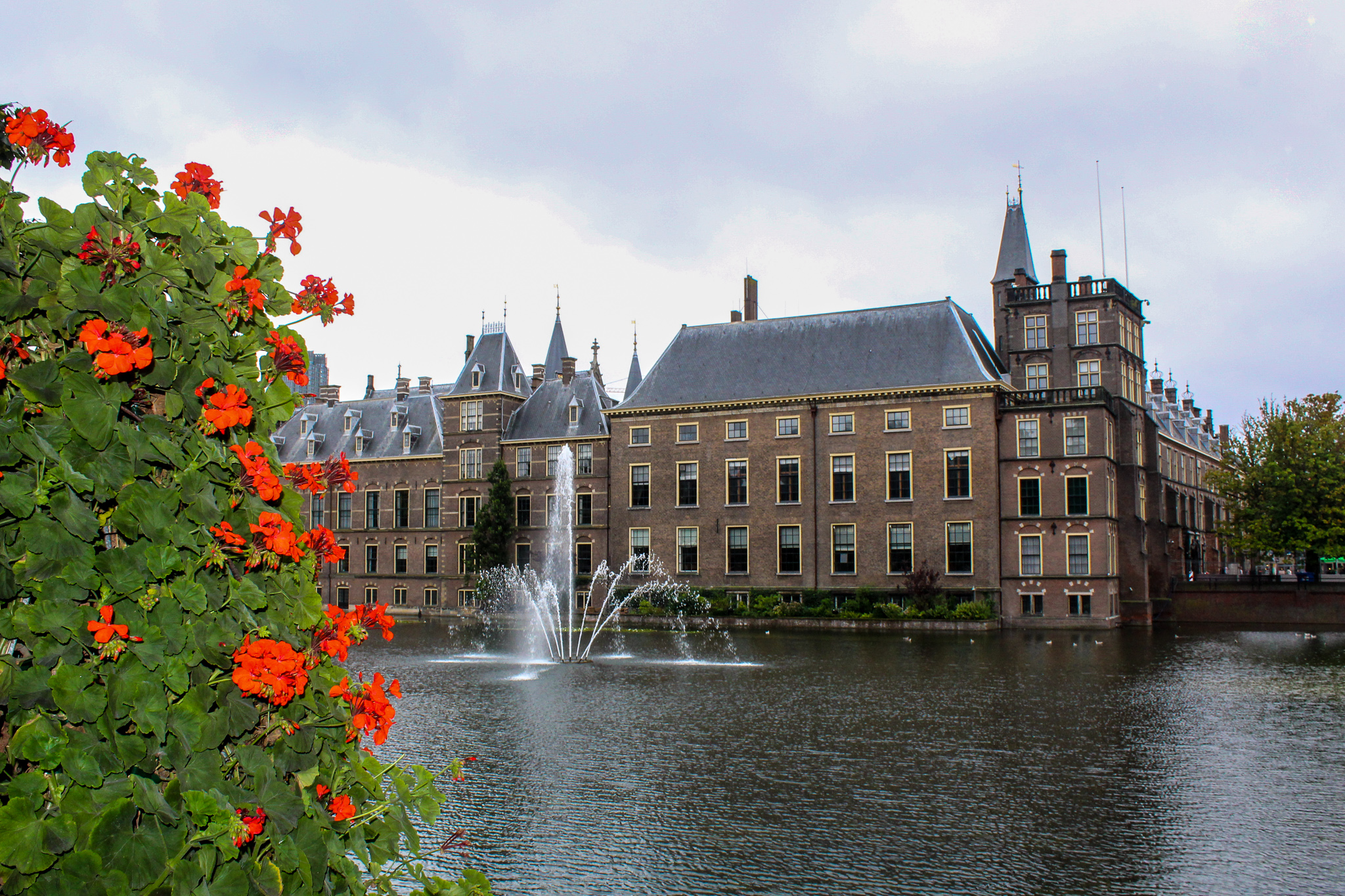 half day trips from amsterdam can include the hague
