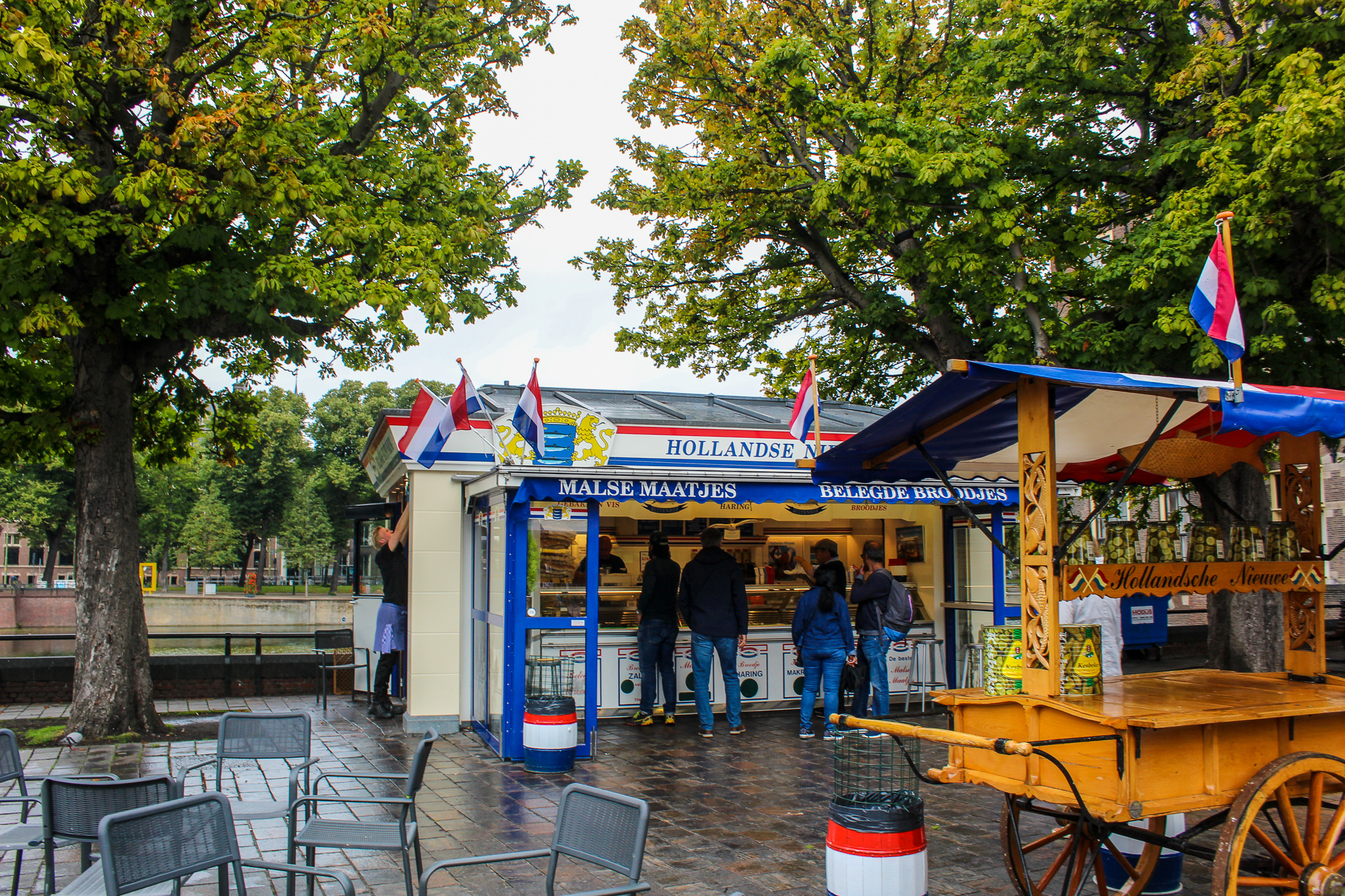 the top day trips from amsterdam include eating lots of herring