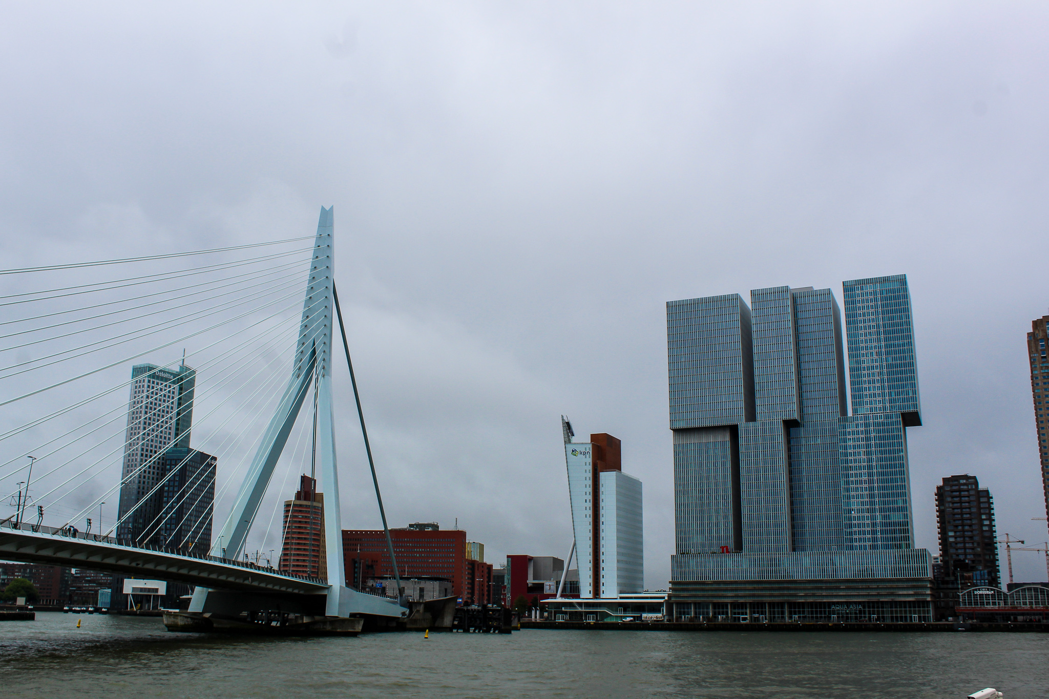rotterdam day trip from amsterdam and see the bridge