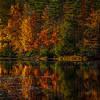 Plum Orchard Lake