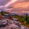 Bear Rocks