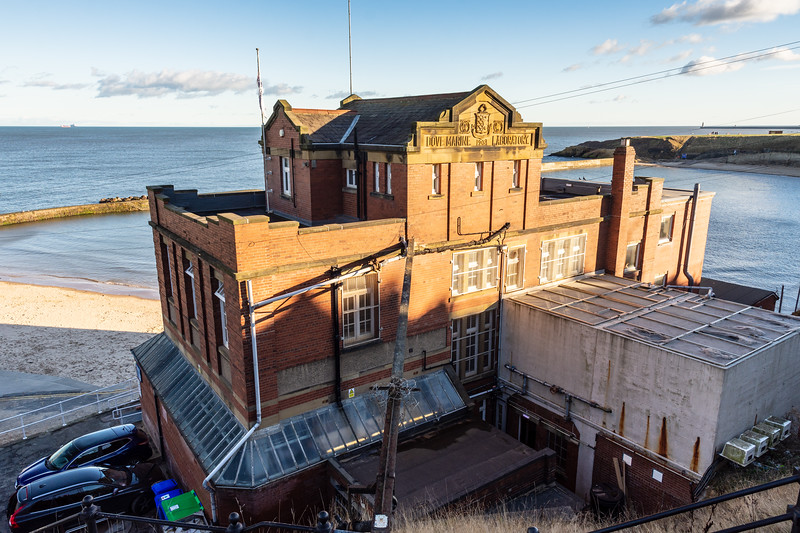 Dove Marine Laboratory in Tynemouth