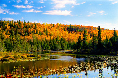 Baptism Fall Fire.  While traveling down County Highway 7 near the town of Finland on a late September trip to the BWCA, I noticed this lovely scene along the shore of the Baptism River. Photographed with a Nokon N90s film camera and Kodak 200 negative film.