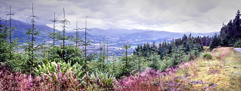 The Vale of Keswick from the Whinlatter Forest top road.