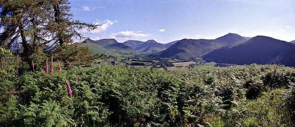 Swinside : Newlands and the NW Fells