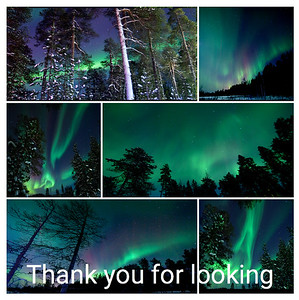 Collage of the Northern Lights:  Finland