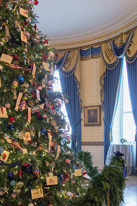 The official White House Christmas Tree