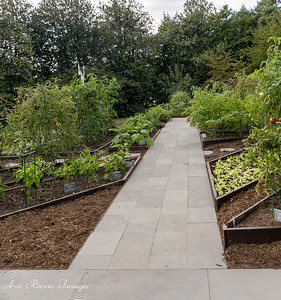 The White House Kitchen Garden