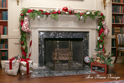 The Library Fireplace Decorations
