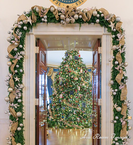 The White House Christmas Tree in the Blue Room