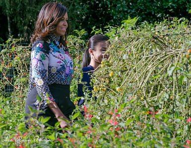 First Lady Michelle Obama Enters the Garden