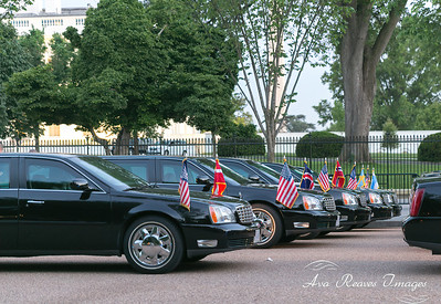 Flags and Limos.