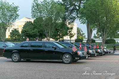 Limos for The Nordic Leaders