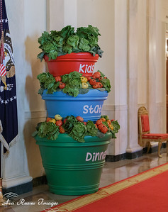 Decor for the Kids State Dinner