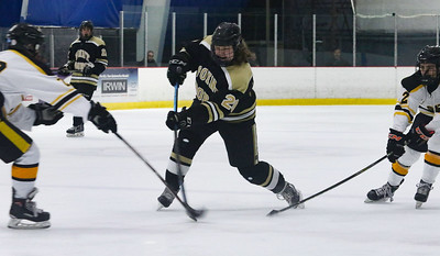 no.20, Ryan McCabe Point Pleasant Boro Hockey v/s Saint John Vianney in the Handchen Cup in Wall, NJ on 2/13/19. [DANIELLA HEMINGHAUS   THE OCEAN STAR]