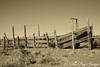Corral_img_1788_West_04212013