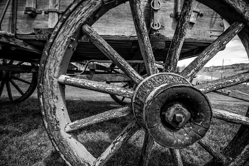Wheel 5/2015