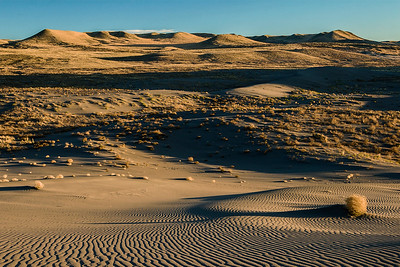 View East from Bruneau Dunes, Idaho.