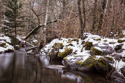 Winter creek ~ Ashland, Oregon.