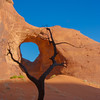Monument Valley - Fire Tree  (April 2014)