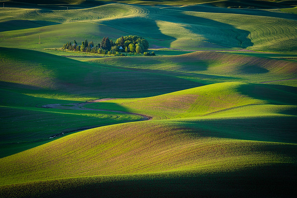 Rolling farmlands of the Palouse region of Eastern Washington shot from Steptoe Butte.