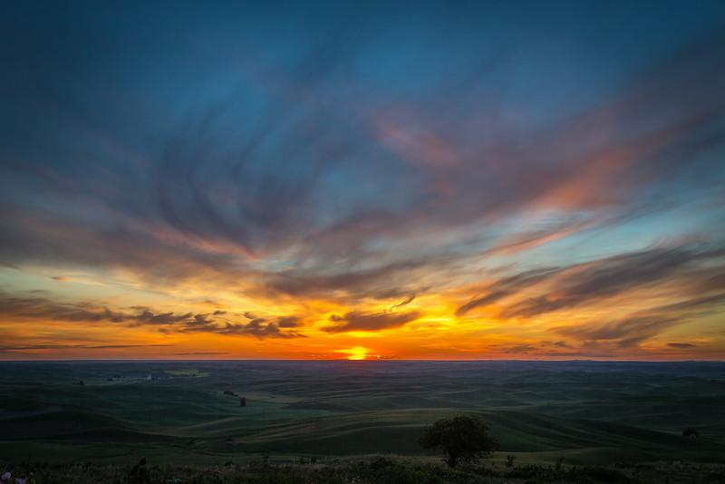 The Palouse at sunset