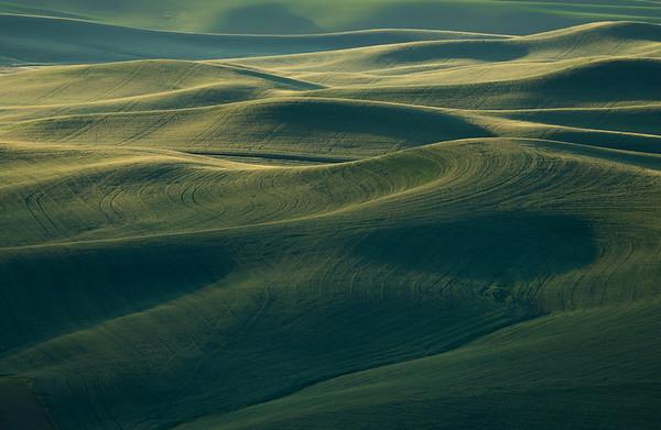 Rolling farmlands of the Palouse region of Eastern Washington shot from Steptoe Butte.