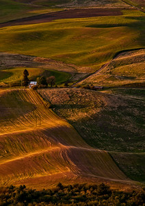 The Palouse, WA