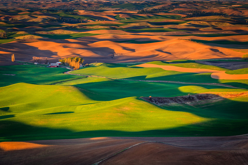 A beautiful view from Steptoe Butte