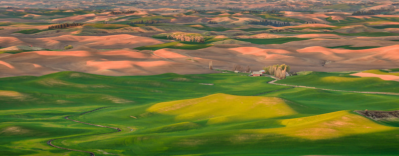 Sunrise on the Palouse