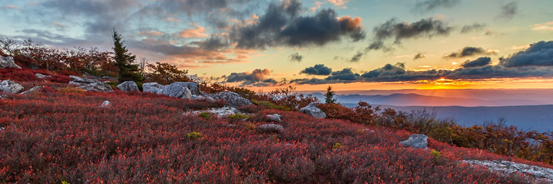 Dolly Sods Sunrise Pano
